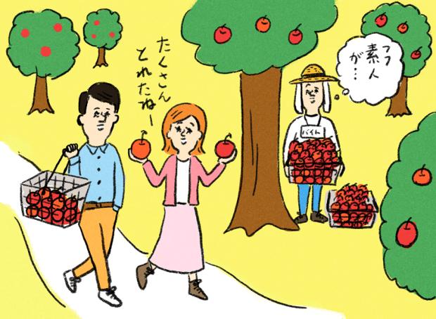 秋バイト 収穫バイト